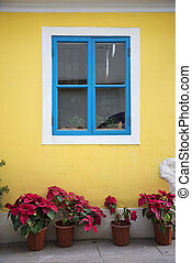 portuguese style colorful window in taipa macau china