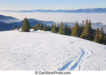 Ski track in winter mountain land - The large flat snow area...