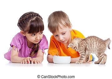 happy children feeding kitten - happy children girl and boy...