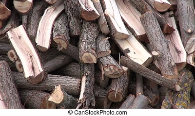 chopped firewood stack in  spring