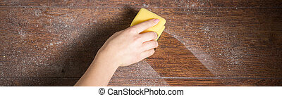 Seedy hardwood - Panoramic photo of womans hand cleaning...