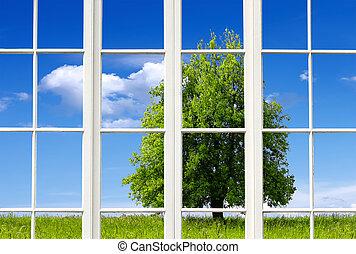 finestra, natura