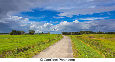 Dutch Road through Pastures