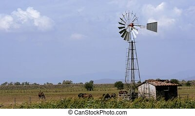 heartland water tower - Farmland Agriculture Landscape with...