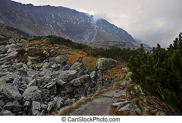 Autumn in five lakes valley in High Tatra Mountains Poland