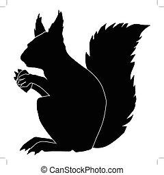 squirrel - silhouette of squirrel