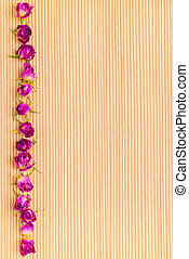 frame of dried pink rose flowers on wooden striped background, c