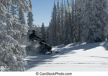 Snowmobile riding coming between trees creating powder