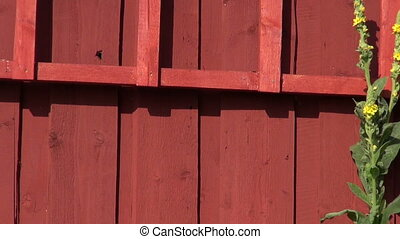 farm red wooden wall and ladder - farm barn red wooden wall...