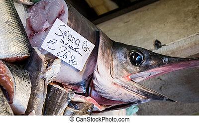 pez espada,