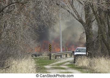 Prescribed Burn - At a marsh a prescribed burn sends flames...