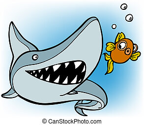 shark chasing goldfish - isolated on a white background