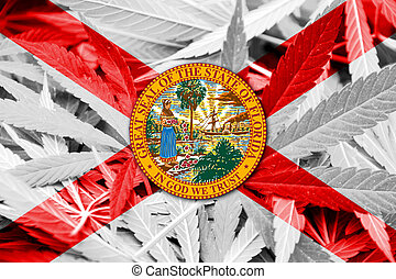 Florida State Flag on cannabis background. Drug policy....
