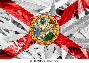 canapa, Florida, Marijuana, droga, politica, legalization,...