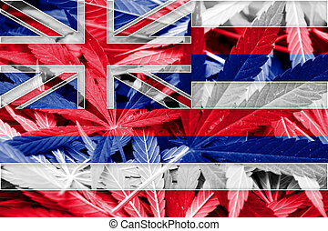 Hawaii State Flag on cannabis background Drug policy...
