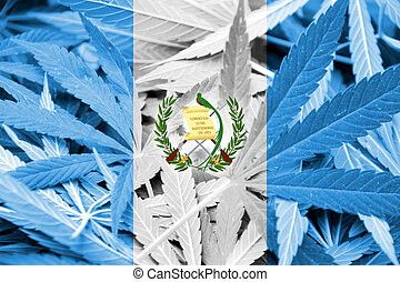 Guatemala Flag on cannabis background. Drug policy....