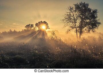 美しい, 神秘主義である, 風景
