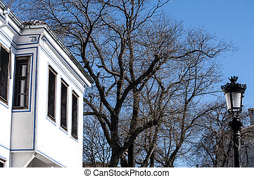 Old town house and winter tree on blue sky background