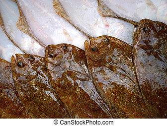 Ryby, flądra, boki, dwa