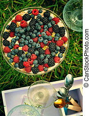 trifle  dessert with wild berries.image is tinted