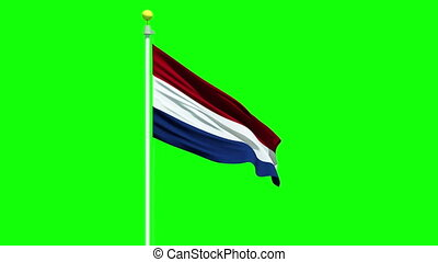 Waving Dutch flag on a green screen - Flag of the...