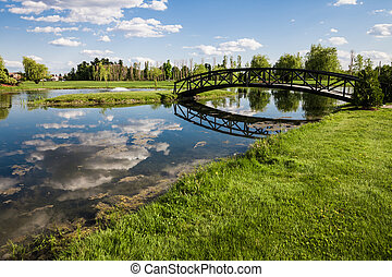Little Bridge Over a Pond and landing on a Small Grass...