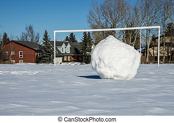snowball ready for penalty kick