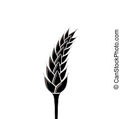 Black silhouette of spikelet of wheat isolated on white...