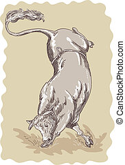 Illustration of a bucking bull done in sketch style