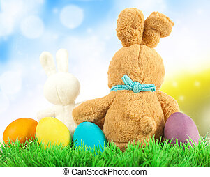 Easter Eggs and Bunny in Meadow
