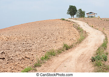 Road on the slopes of the hill area to be tilled