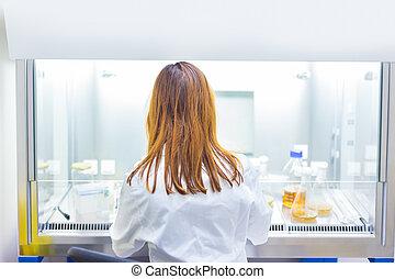 vida, científico, Investigar, en, el, laboratory.,