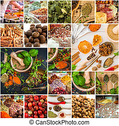 spices and herbs - collage photos of spices and herbs