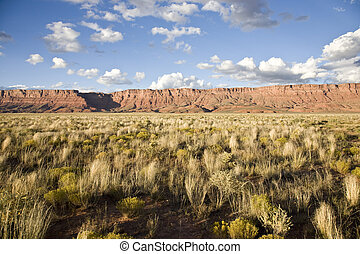 Vermillion Cliffs National Monument in Arizona, USA