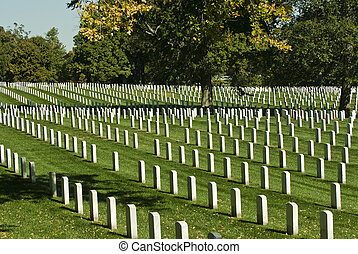Arlington Cemetery - Rows of grave stone markers in...