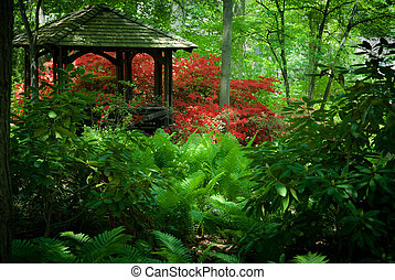 Botanical Garden - Beautiful manicured shade garden with a...