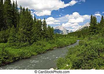 Canadian Rockies - A stream in the Kananaskis Country area...