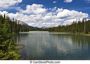 Canadian Rockies - Mud lake in the Canadian Rockies near...