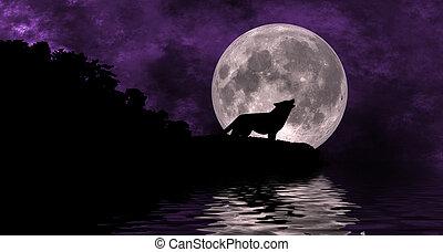 Wolf Moon illustration