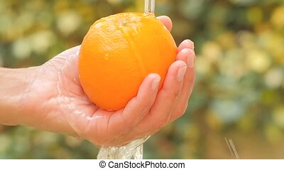 orange fruit close up - orange in hand under flowing water...