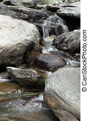 Mountain stream in Dharamsala in India