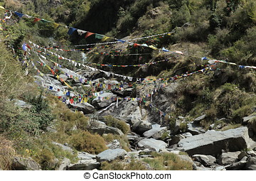 The landscape at Dharamsala in India