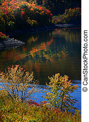 Scenic Autumn landscape in Allegheny - Colorful trees by...