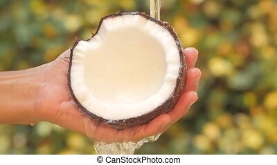 coconut close up - coconut in hand under flowing water slow...