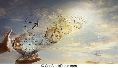 tiempo, moscas,