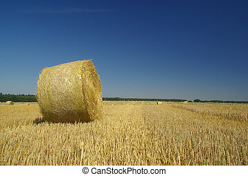bale of straw 17