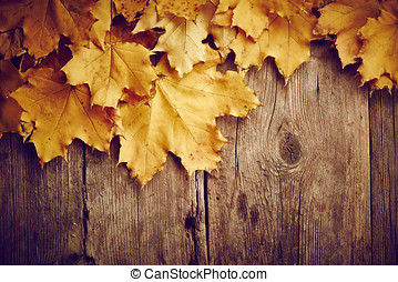 Maple autumn leaves on wooden background