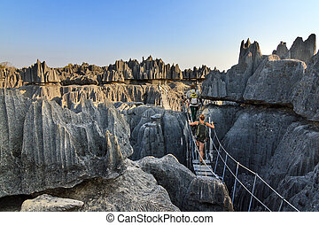 Rope bridge Tsingy - Beautiful tourist on an excursion in...