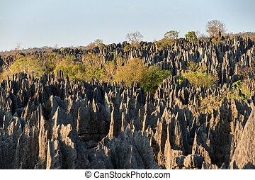 Grand Tsingy de Bemaraha - Beautiful view on the unique...
