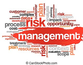 Risk Management word cloud, business concept